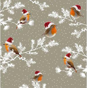 Vánoční ubrousky 25 x 25 cm, 20 ks - Ptáček Robin