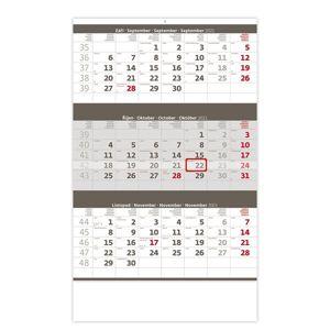 Kalendář nástěnný 2021 - Tříměsíční šedý