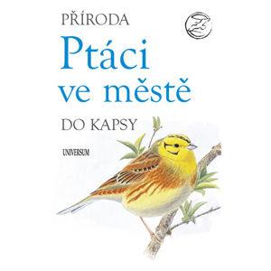 Ptáci ve městě - neuveden