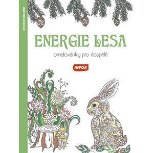 Energie lesa - Omalovánky pro dospělé - neuveden