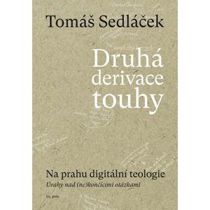 Druhá derivace touhy - Na prahu digitální teologie - Sedláček Tomáš