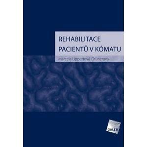 Rehabilitace pacientů v kómatu - Marcela Lippertová-Grünerová